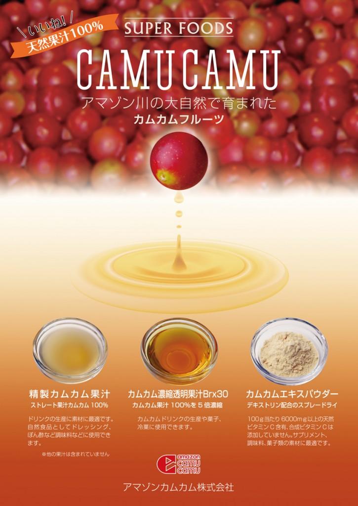 野菜・果汁ワールドポスター-2019-11-20開催