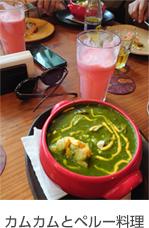 カムカムとペルー料理